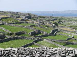 stone-walls-inis-oirr
